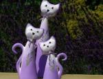 kočky set